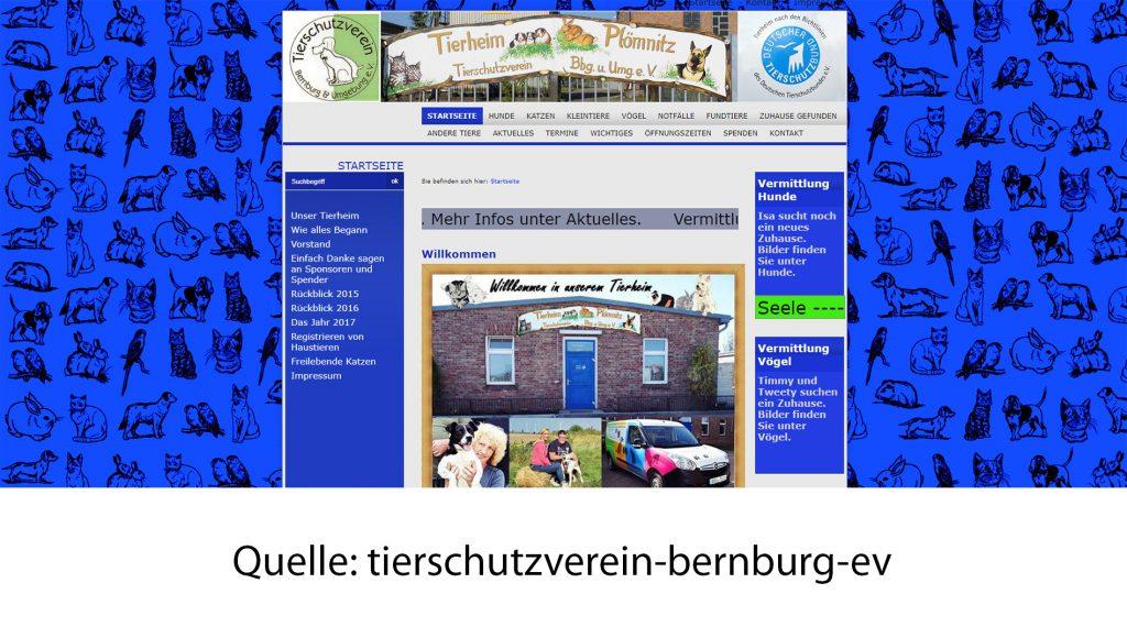 tierschutzverein-bernburg-ev
